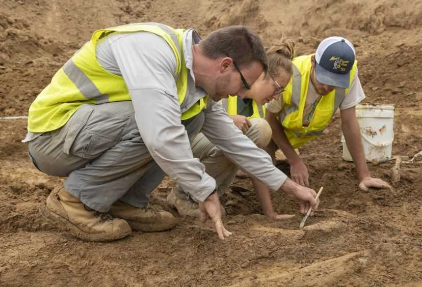 Highlands Ranch Dinosaur Discovery Fossils Bones Excavation